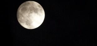 Kein Mann auf dem Mond!